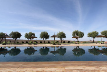 Pool in Marrakech with loungers and trees