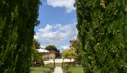 Cypress view to pool Locanda Cugnanello